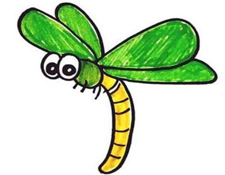 蜻蜓簡筆畫