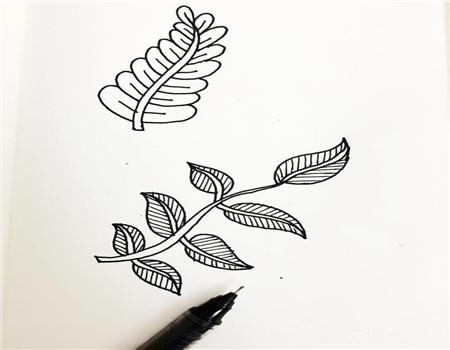 树叶简笔画