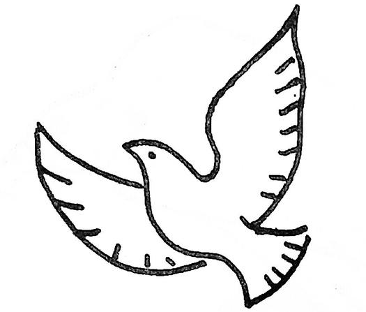 鴿子簡筆畫