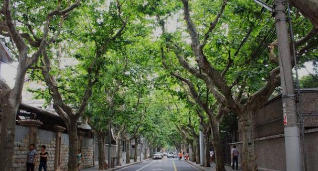 上海十大必游景點