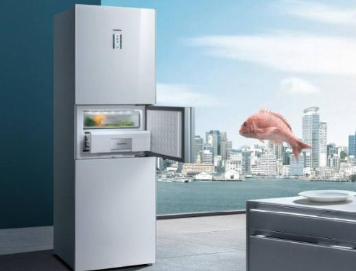冰箱质量排行榜前十名