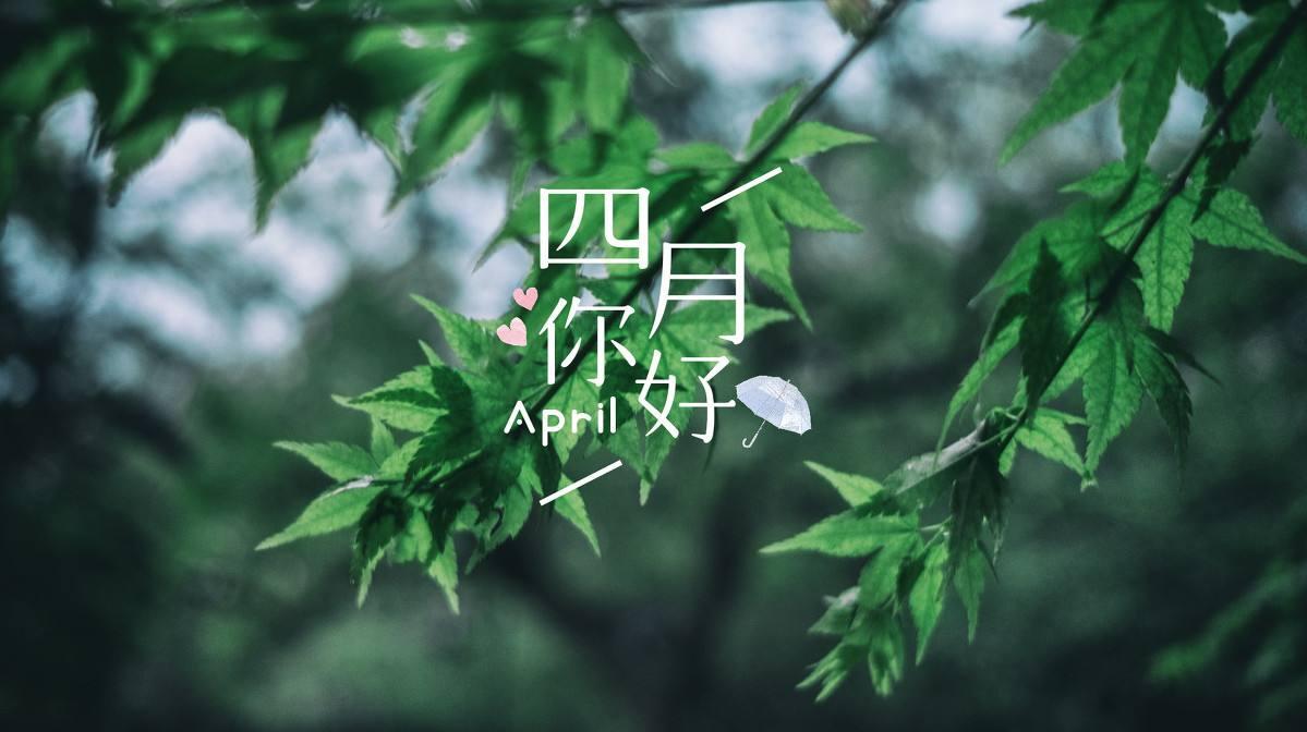 4月有什么节日