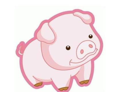 屬豬和什么屬相最配