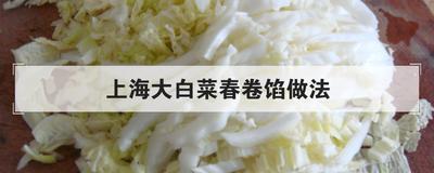 上海大白菜春卷馅做法