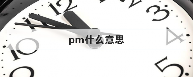 pm什么意思