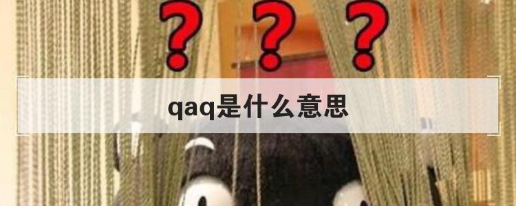 qaq是什么意思