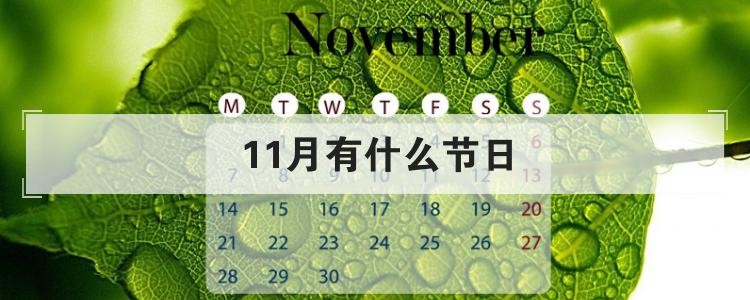 11月有什么節日