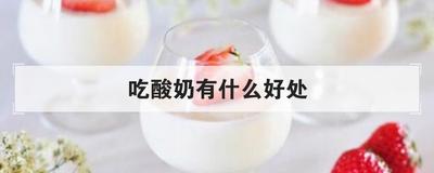 吃酸奶有什么好处