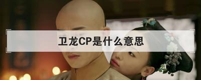 卫龙CP是什么意思