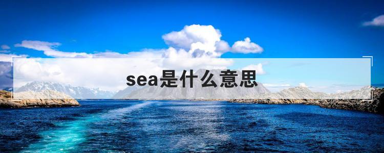sea是什么意思