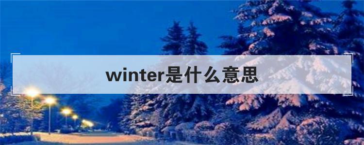 winter是什么意思