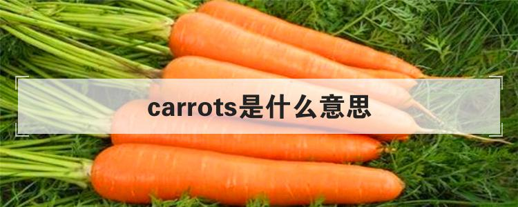 carrots是什么意思