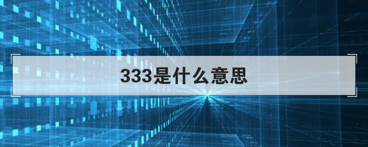 333是什么意思