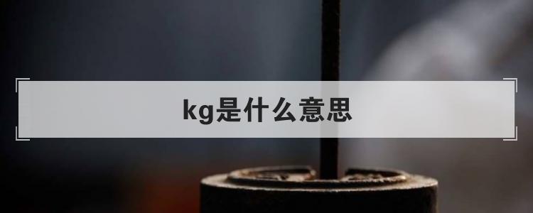kg是什么意思