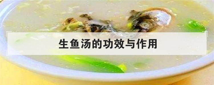 生鱼汤的功效与作用