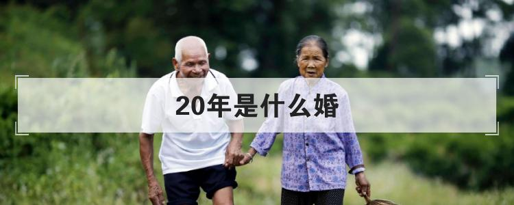 20年是什么婚