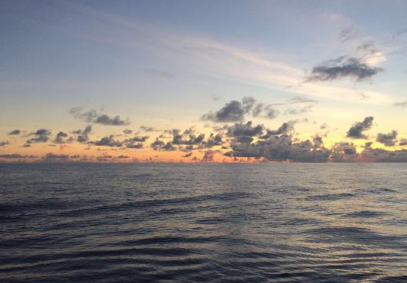 太平洋的中間是什么