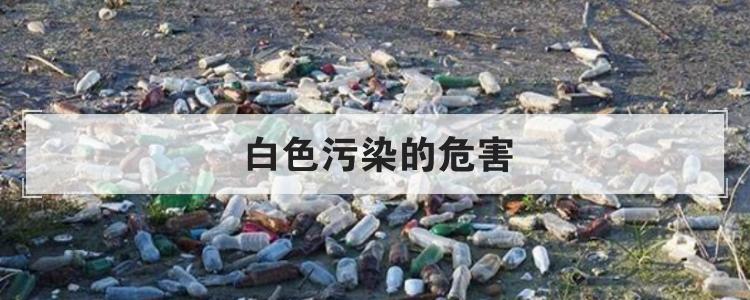 白色污染的危害