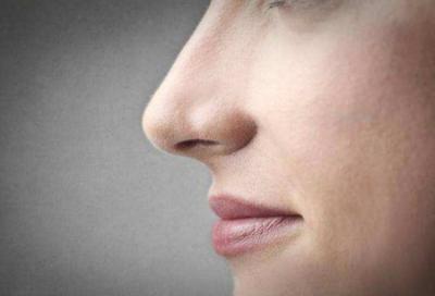 人的鼻子為什么是軟骨