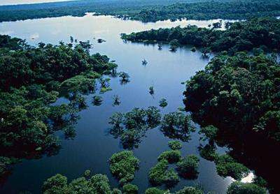 亞馬遜河在哪