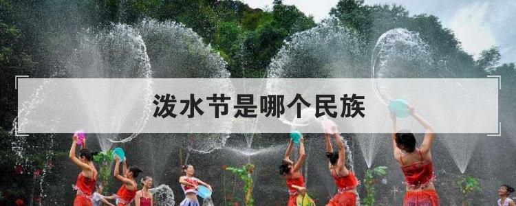 泼水节是哪个民族