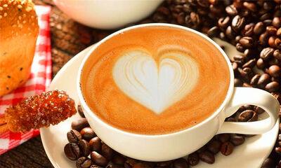 咖啡的故鄉是哪里