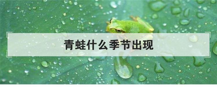 青蛙什么季节出现