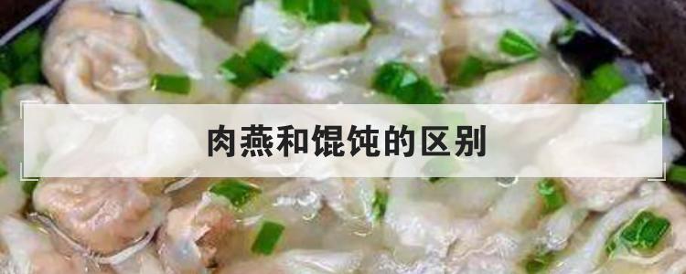 肉燕和馄饨的区别