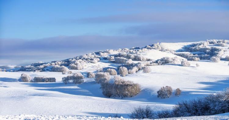立冬和冬至的区别