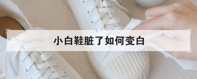 小白鞋脏了如何变白