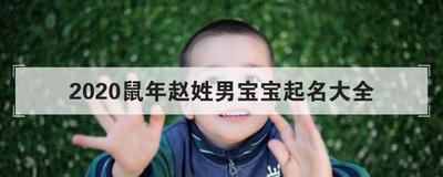 2020鼠年赵姓男宝宝起名大全
