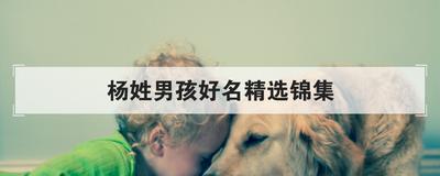 杨姓男孩好名精选锦集