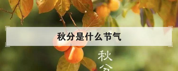 秋分是什么节气