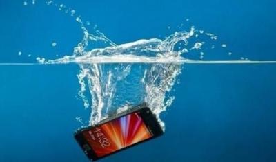 手机掉水里了应该怎么处理