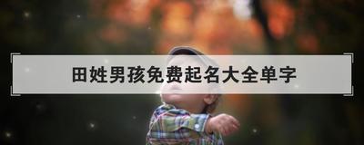 田姓男孩免费起名大全单字