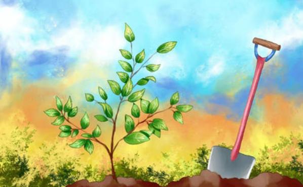 每年的植樹節是什么時候?