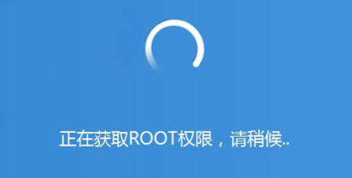 root什么意思