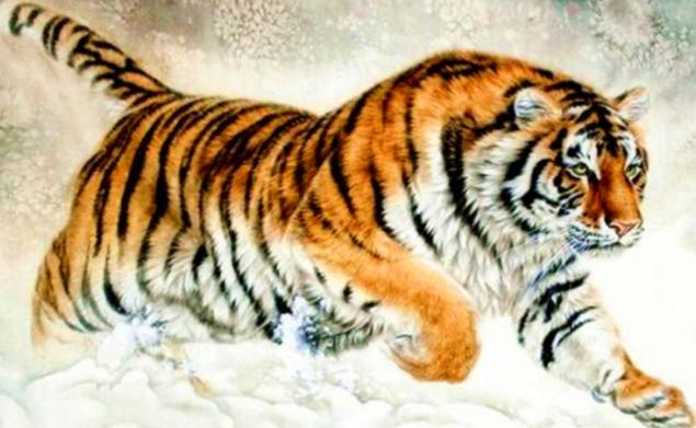 有关虎的成语有那些