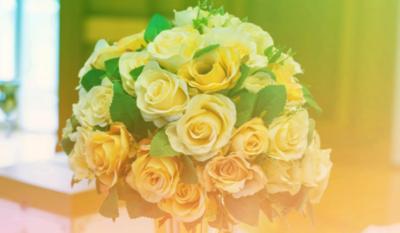 白玫瑰代表什么