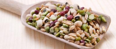 白扁豆是什么