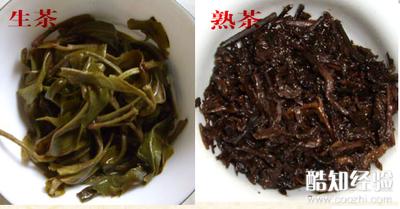 普洱的生茶和熟茶_如何区分普洱生茶与熟茶优质