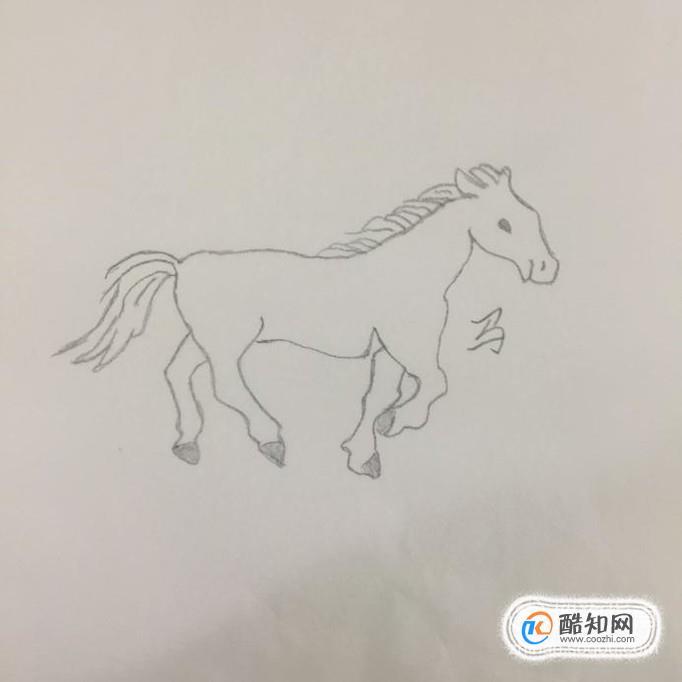 简笔画:生肖可爱马的画法优质