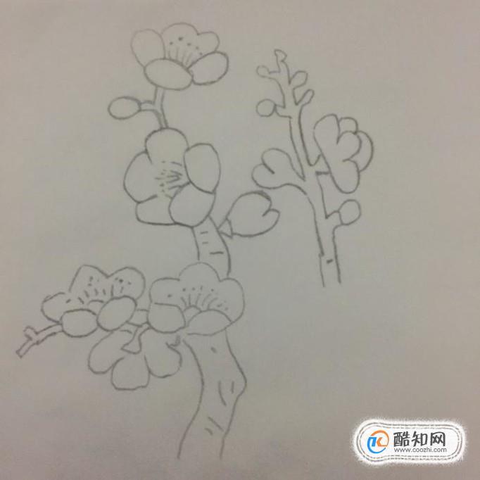 儿童简笔画之梅花树,梅花的简笔画画法步骤优质