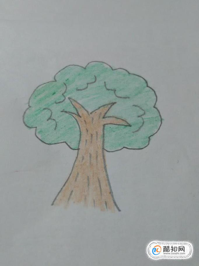 画大树简笔画,先画树冠,再画树干,最后涂色,下面就一起来画大树.