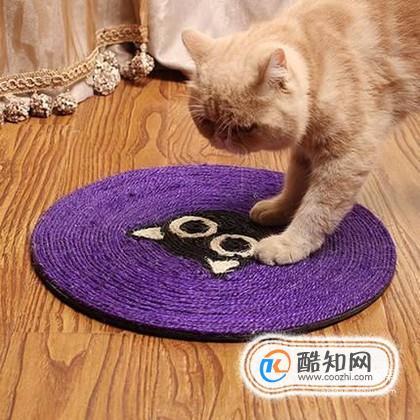 为什么要让猫咪使用猫抓板?有哪些方法能够去使用?_怎么教猫咪用猫抓板