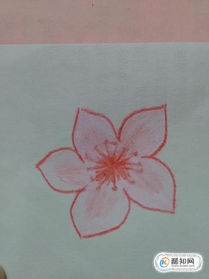 带颜色的桃花简笔画怎么画优质