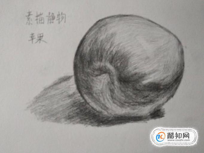 介绍一下素描静物的作画步骤,以苹果的画法来举例子.