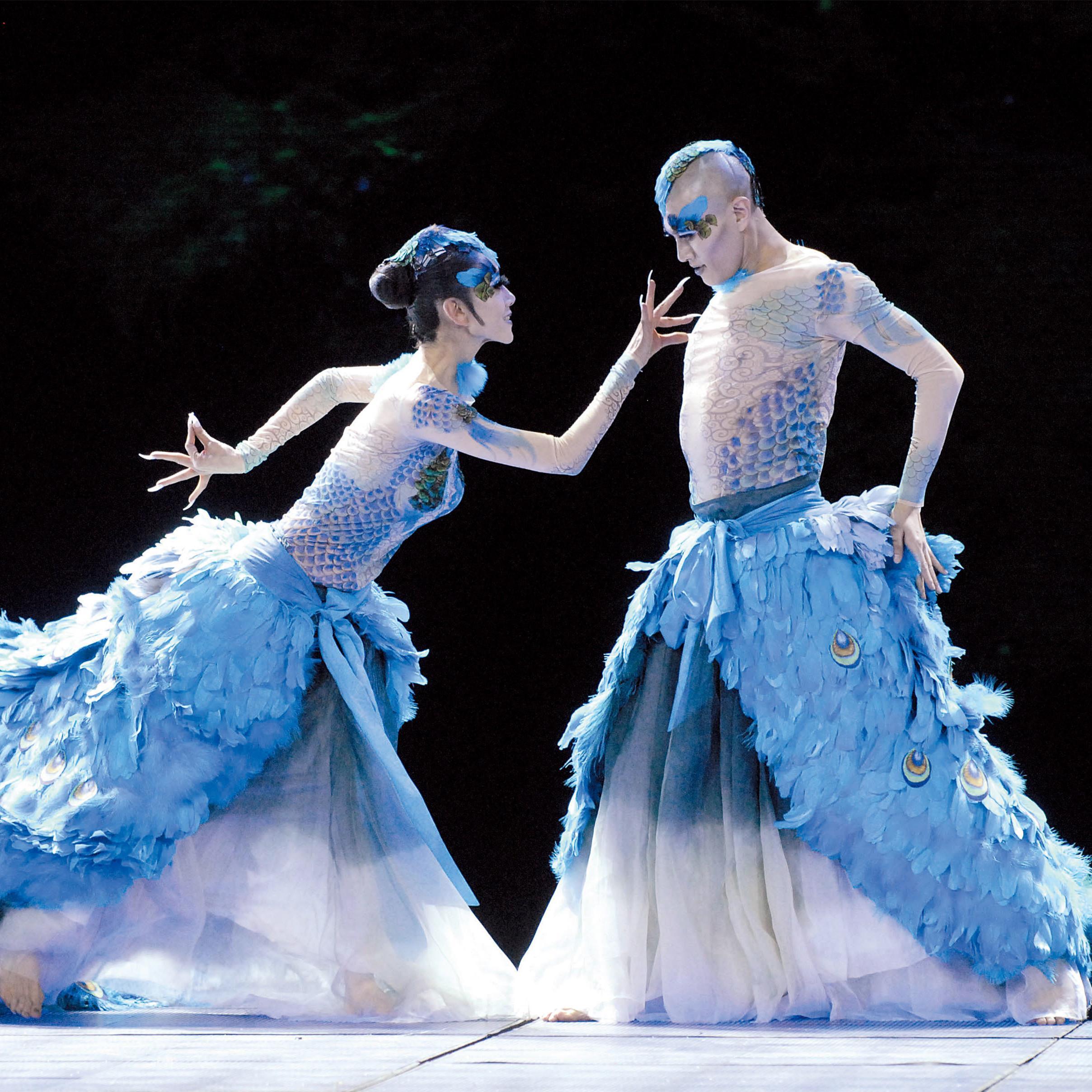 孔雀舞是哪个民族的舞蹈