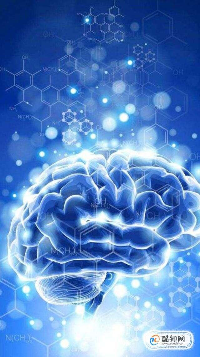 怎么開發左腦,左腦與右腦有什么區別
