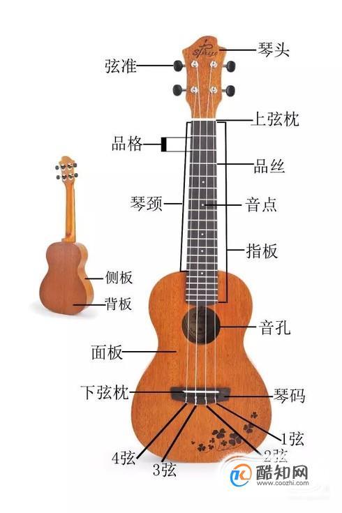 尤克里里的基本知识-琴的构造,调音与识谱